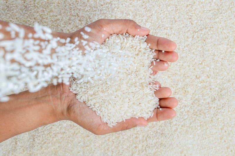 Queda das grões do arroz imagens de stock