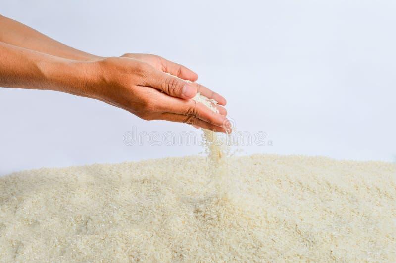 Queda das grões do arroz fotografia de stock
