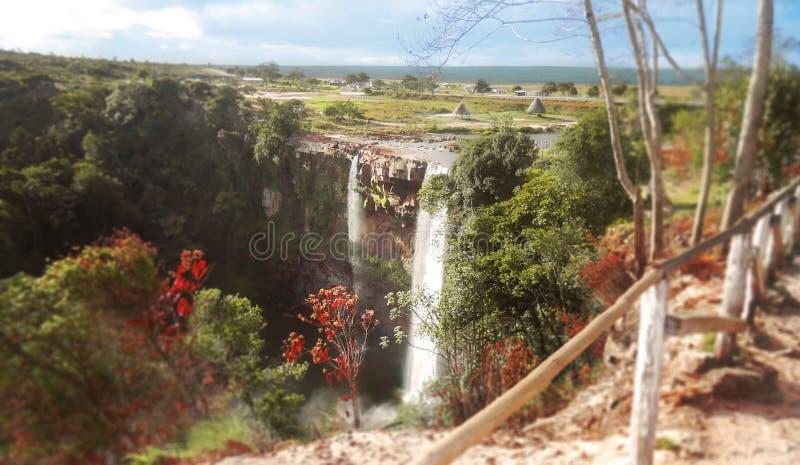 Queda de Kama, canaima do parque nacional, venezuela fotografia de stock