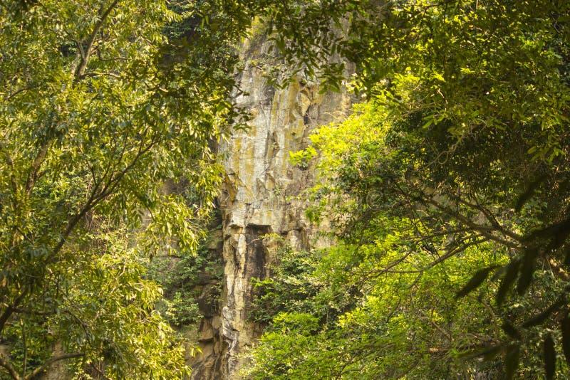 Queda de Kendai um ponto do piquenique no korba, chhattisgarh, india imagens de stock