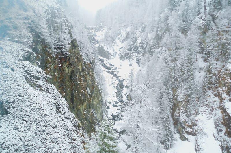 Queda de neve em um desfiladeiro estreito da montanha em cumes suíços imagens de stock