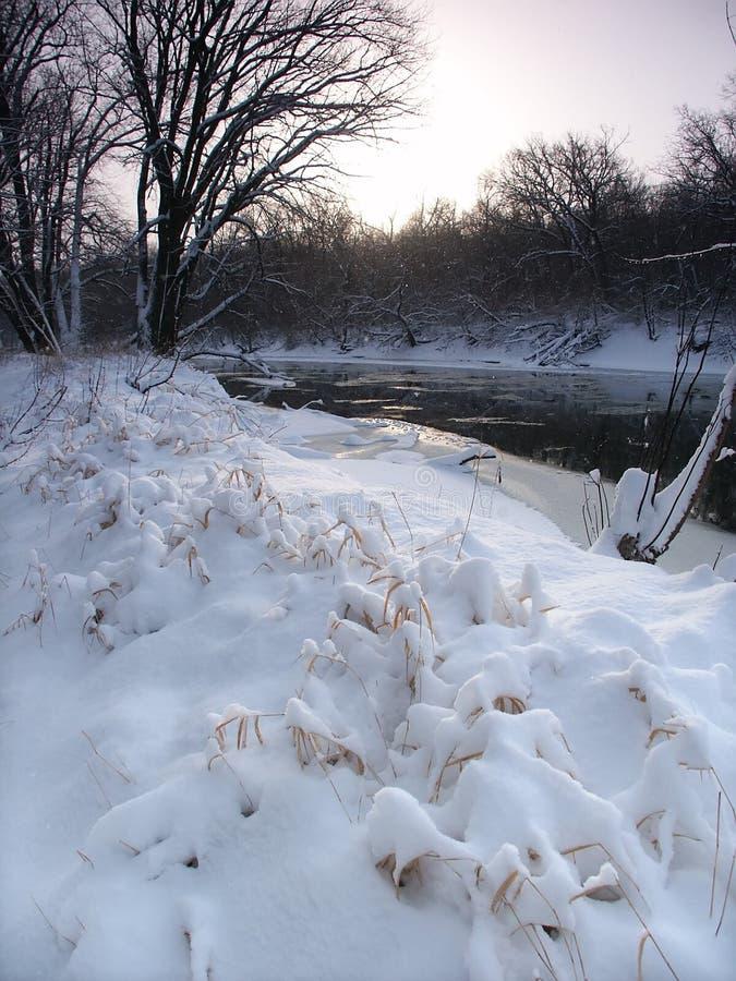 Queda De Neve Fresca Em Illinois Fotografia de Stock Royalty Free