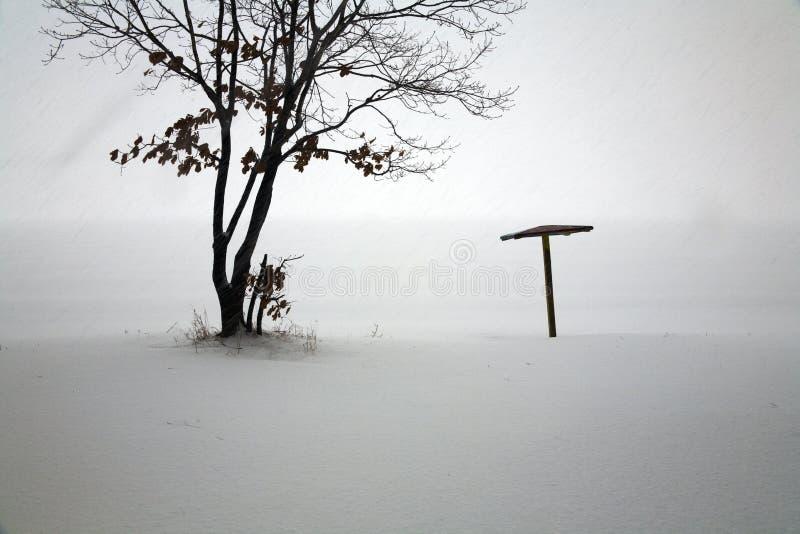 Queda de neve na praia isolada imagem de stock
