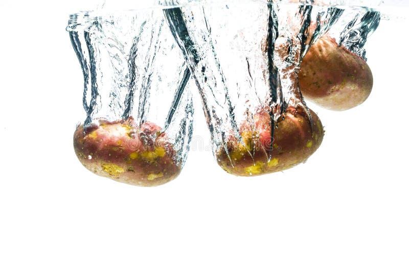 Queda de Potatos profundamente sob a água imagem de stock