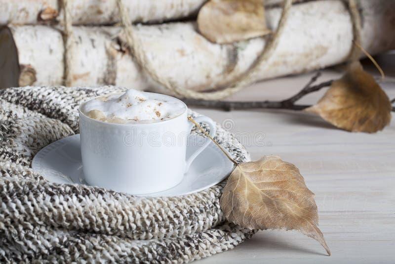 Queda 2 do cappuccino foto de stock royalty free