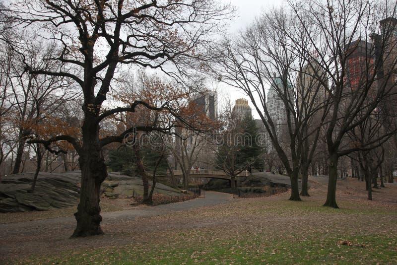Queda em Central Park manhattan fotografia de stock