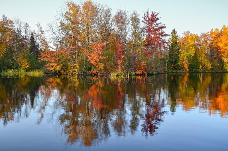 A queda luxúria coloriu a reflexão das árvores na água azul do lago imagem de stock royalty free