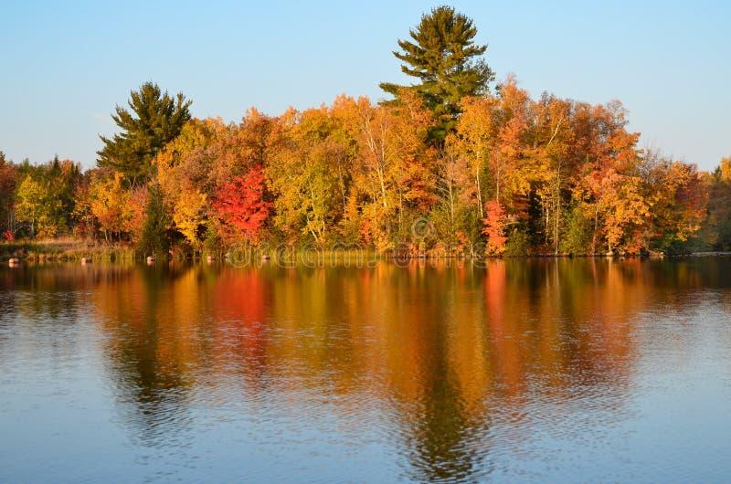 A queda luxúria coloriu a reflexão das árvores na água azul do lago foto de stock