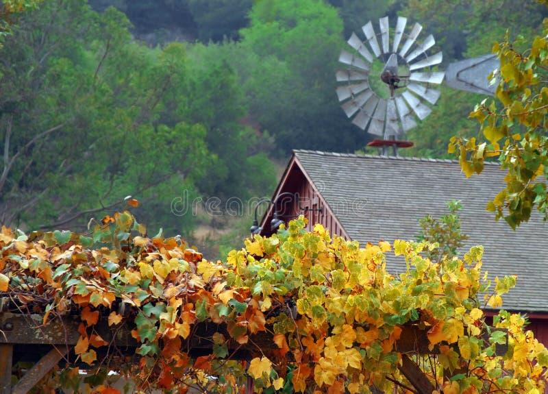 Queda na exploração agrícola fotografia de stock royalty free