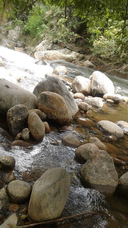 Queda Sri Lanka da chuva fotografia de stock