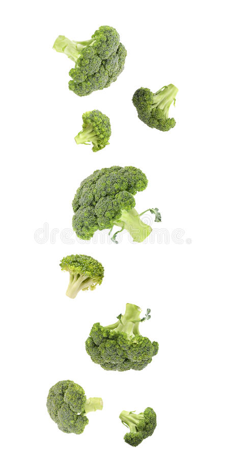 Queda verde vibrante fresca dos brócolis. foto de stock