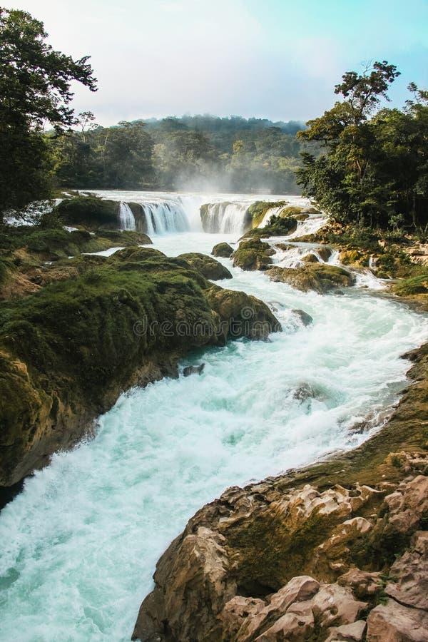 Quedas Chiapas México da água azul, as cascatas mexicanas de Azul da água fotografia de stock
