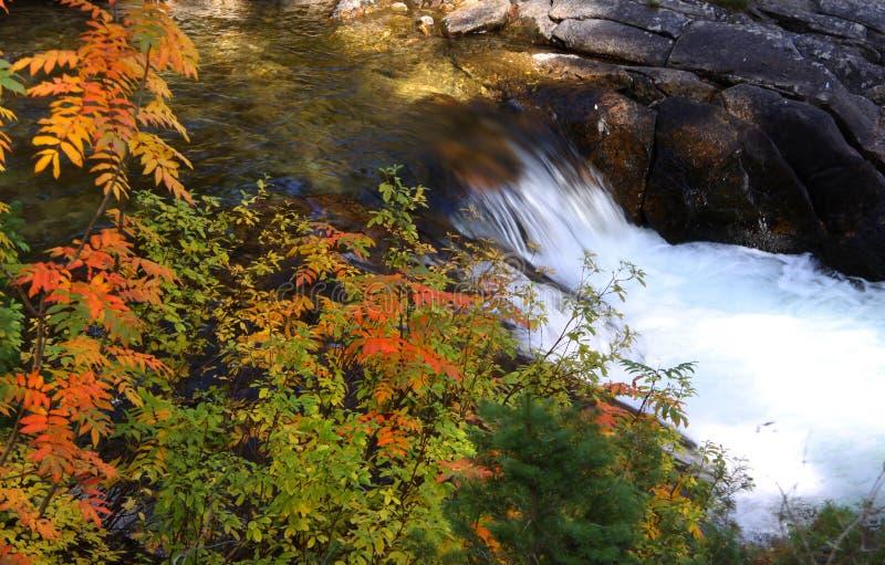 Download Quedas da água imagem de stock. Imagem de rapids, pedregulhos - 26511573