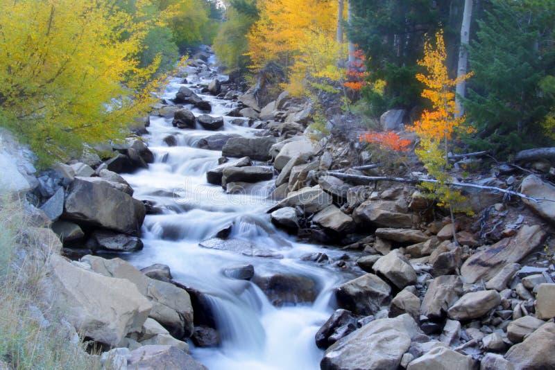 Quedas da água da cascata fotografia de stock royalty free