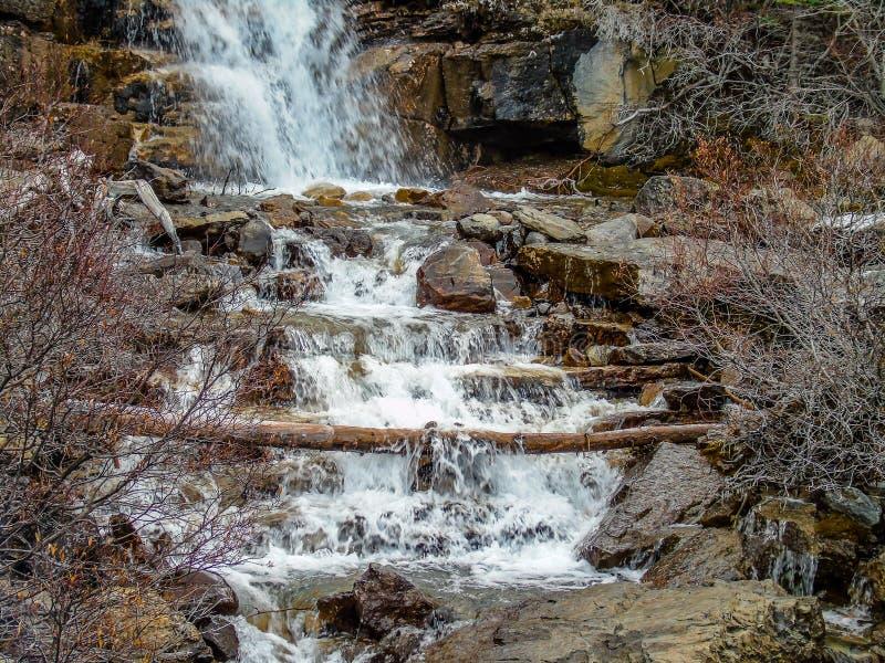 Quedas da angra do emaranhado, Jasper National Park, Alberta, Canadá fotos de stock