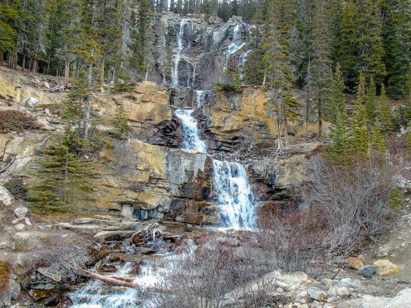 Quedas da angra do emaranhado, Jasper National Park, Alberta, Canadá fotografia de stock