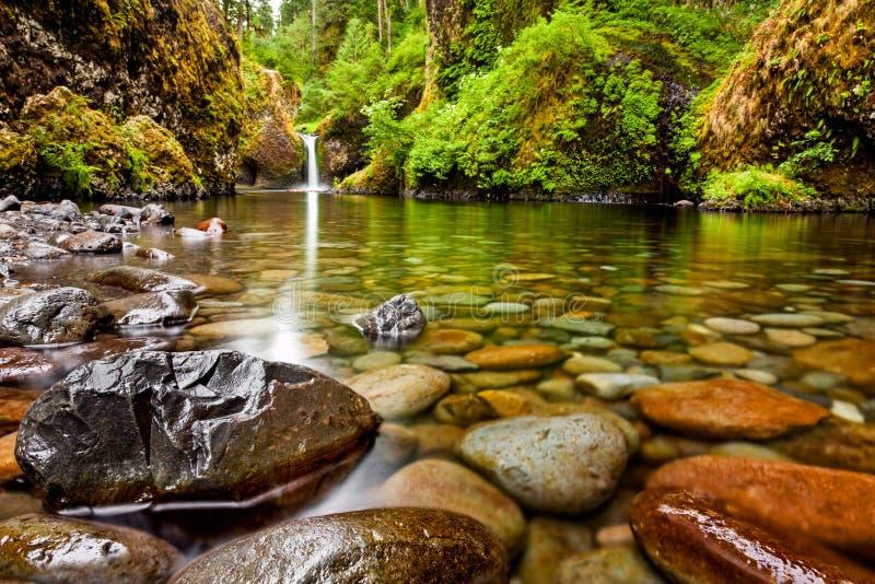 Quedas da bacia de perfurador ao longo de Eagle Creek Trail em Oregon com focu fotos de stock