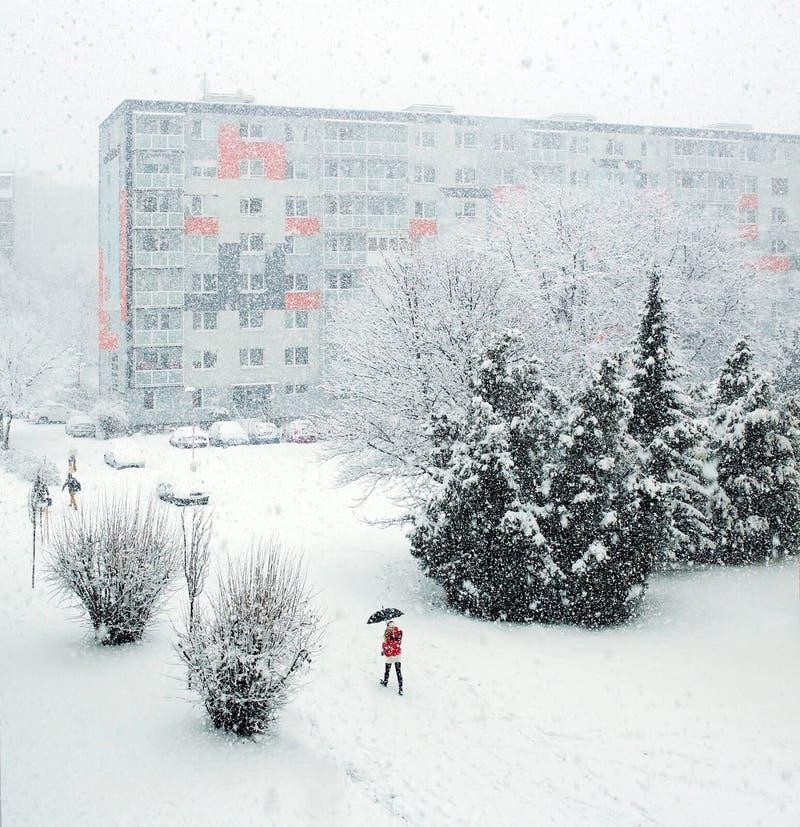 Quedas da neve fotos de stock