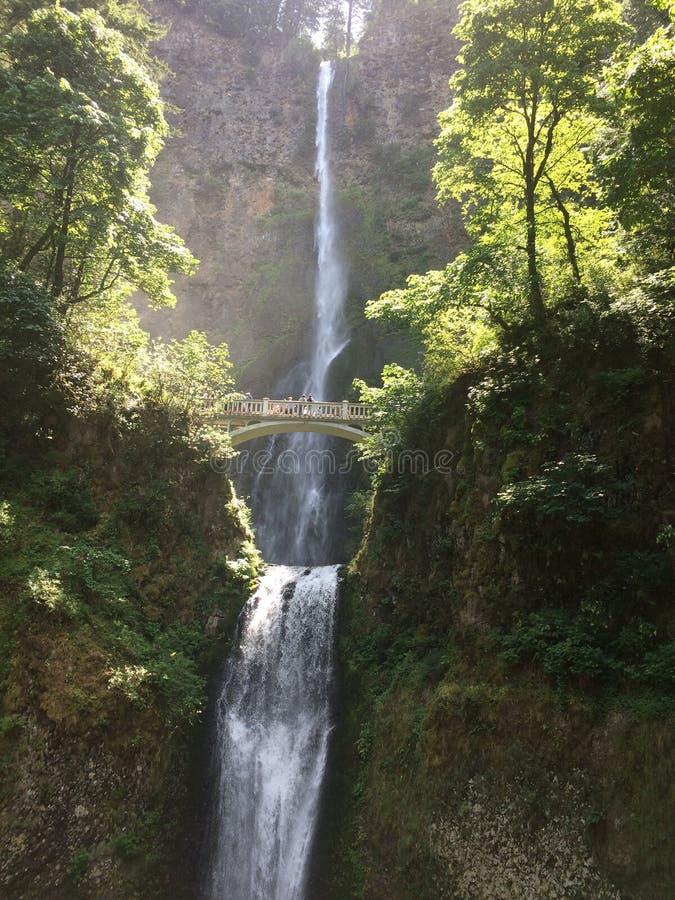 Quedas de Multnomah imagens de stock royalty free