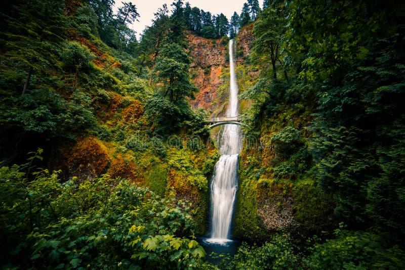 Quedas de Multnomah, desfiladeiro do Rio Columbia, Oregon imagem de stock