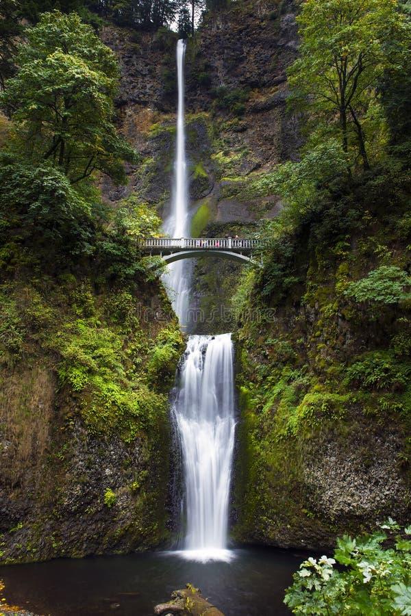 Quedas de Multnomah, desfiladeiro do Rio Columbia, Oregon imagens de stock