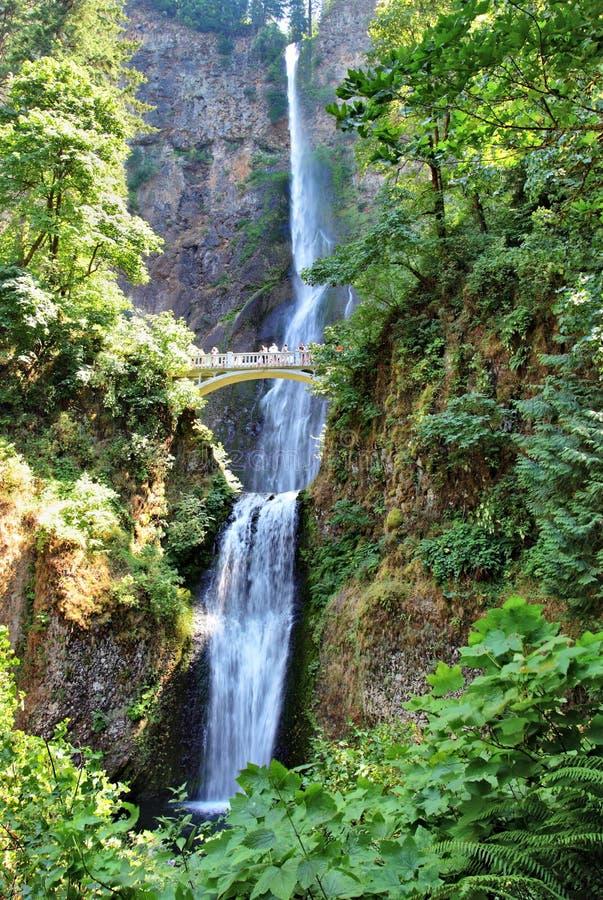 Quedas de Multnomah, Oregon fotografia de stock royalty free