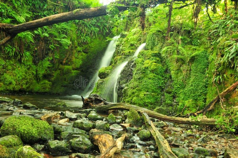 Quedas de Venford, perto de Dartmoor, Devon foto de stock