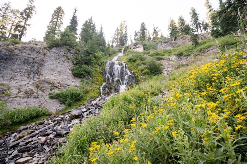 Quedas de Vidae situadas ao longo de Rim Drive no parque nacional do lago crater imagens de stock royalty free