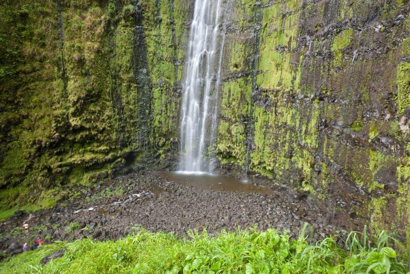 Quedas de Waimoku, Maui foto de stock royalty free