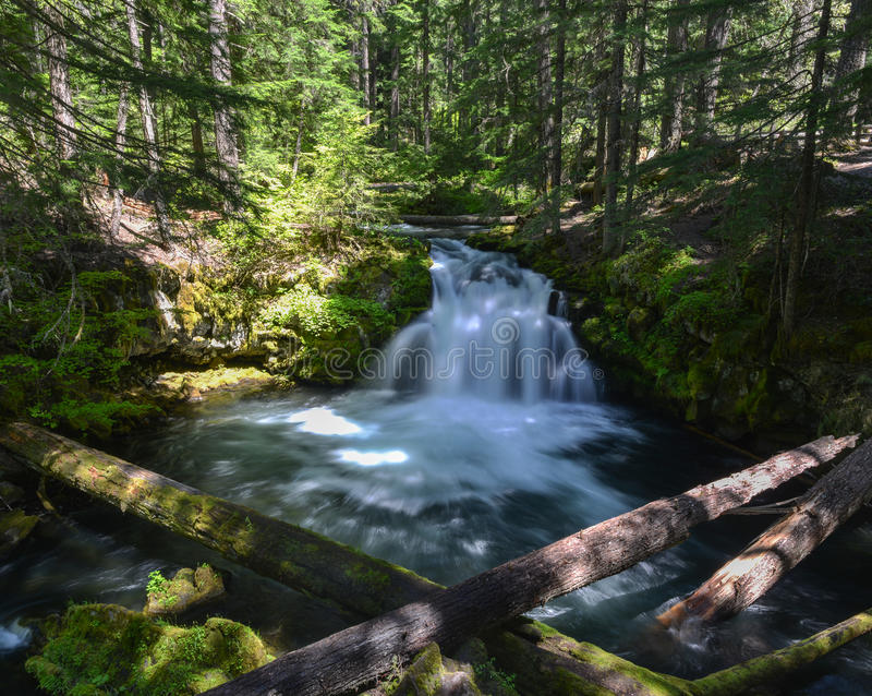 Quedas de Whitehorse, Oregon imagens de stock royalty free