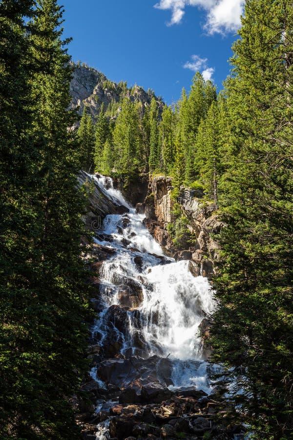 Quedas escondidas no parque nacional grande de Teton, Wyoming, EUA imagens de stock
