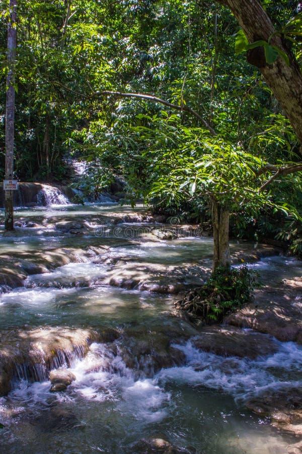 Quedas jamaicanas 2 do rio imagem de stock royalty free