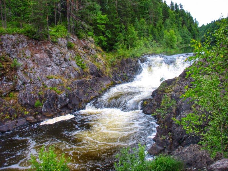 Quedas Kivach, Kareliya, Rússia fotografia de stock royalty free