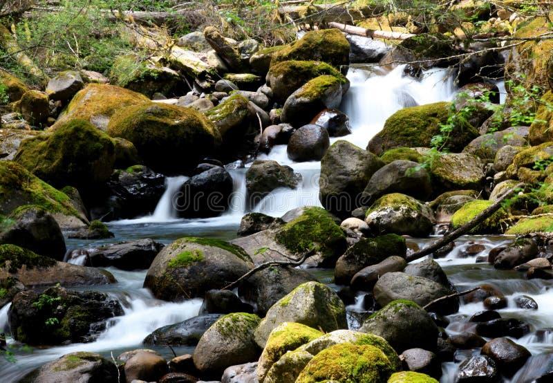 Quedas pequenas da água foto de stock royalty free