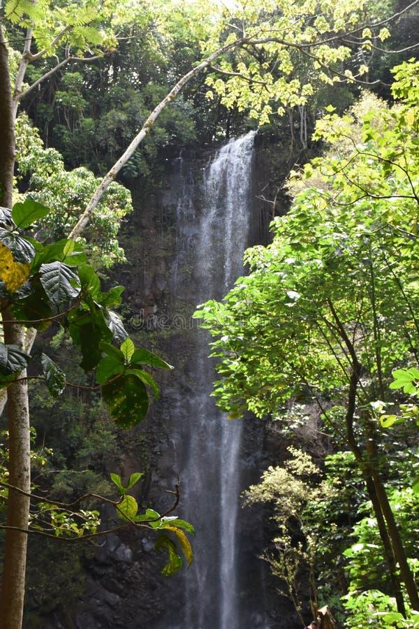 Quedas sagrados em Kauai, Hava? imagens de stock