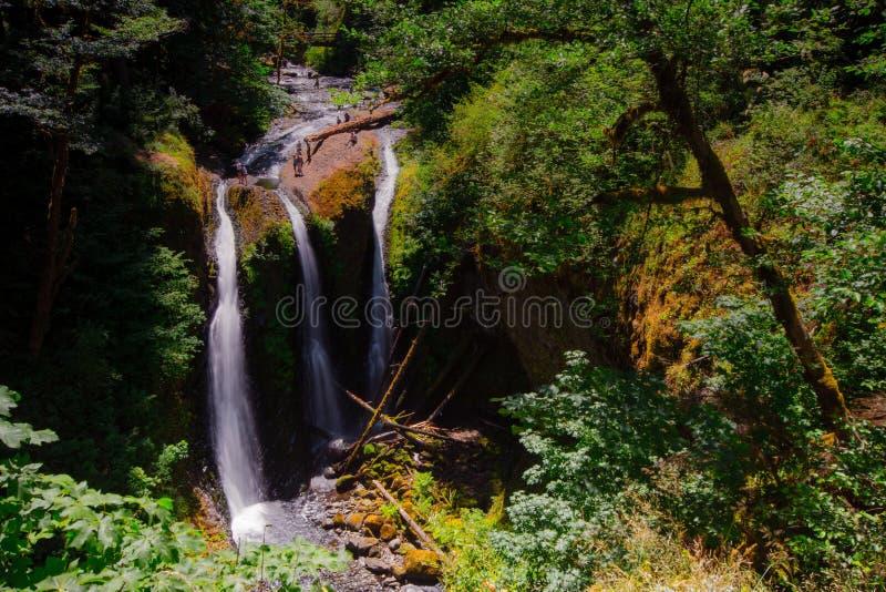 Quedas triplas, situadas na área cênico nacional do desfiladeiro do Rio Columbia de Oregon foto de stock royalty free