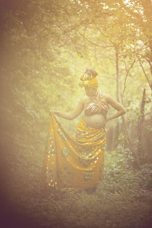 The queen of Africa royalty free stock photos
