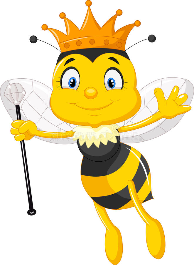 Queen bee cartoon vector illustration