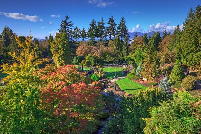 Queen Elizabeth park in autumn colors. Vancouver, Canada stock image