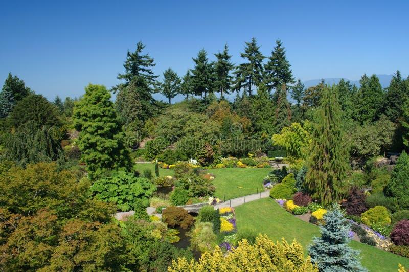 Queen Elizabeth Park, Vancouver stock photography
