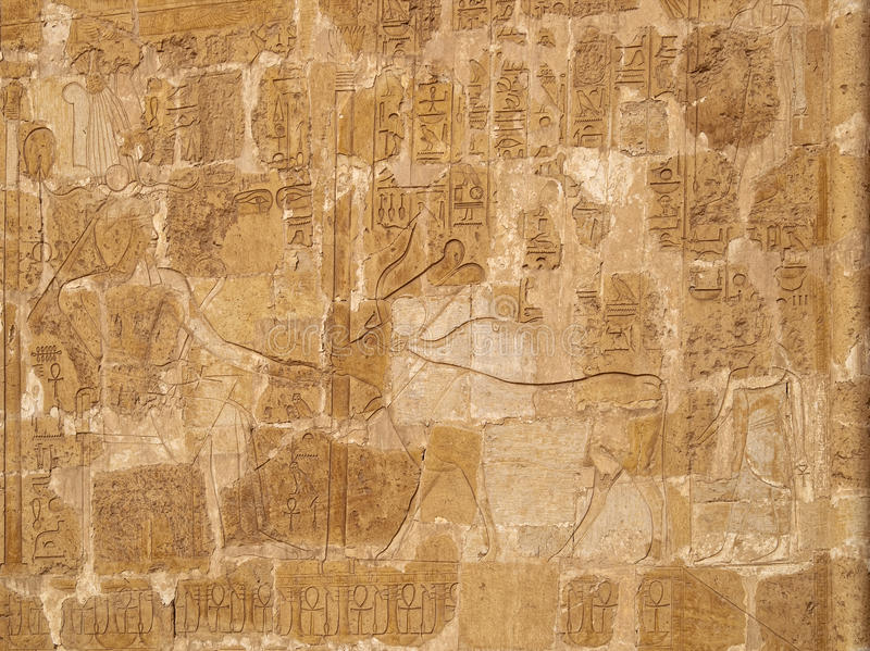 Download Queen Hatshepsut And Sacred Cow Relief Stock Photo - Image: 12802782