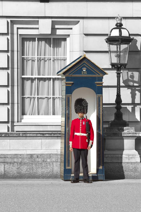 Queen`s Guard in Buckingham Palace - London royalty free stock image