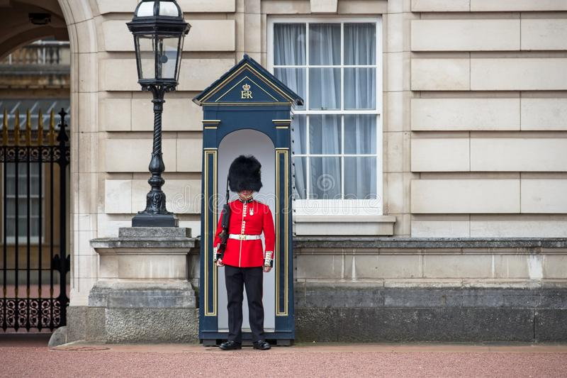 A Queen`s Guard at Buckingham Palace. stock images