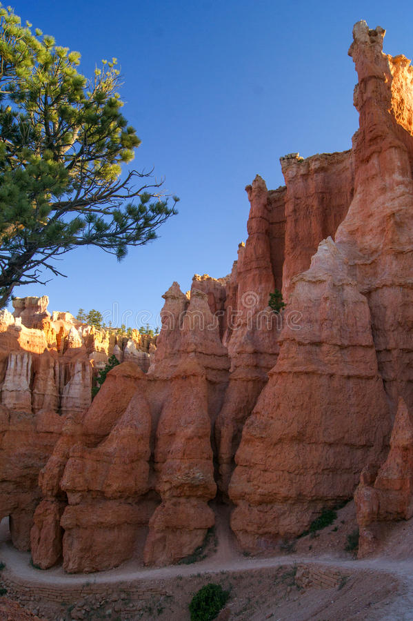 Queen& x27; s Tuinsleep, Bryce Canyon stock foto