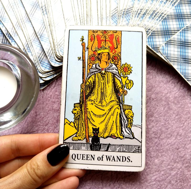 Queen of Wands Tarot Card. Be Strong, Capable, Dynamic, Powerful and Independent royalty free stock photography
