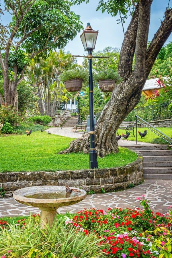 Queens Parkuje Bermuda fotografia royalty free
