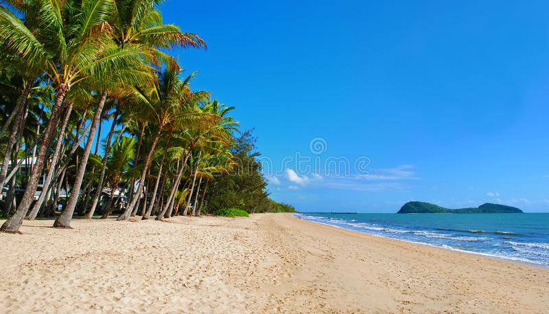 Queensland Beach. Beautiful tropical beach in Palm Cove, Queensland, Australia stock photography