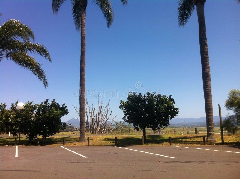 Queensland-Leben lizenzfreie stockfotos