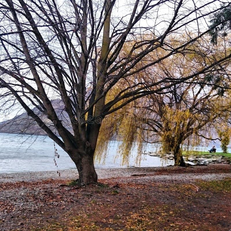 Queenstow étonnant Nouvelle Zélande images stock