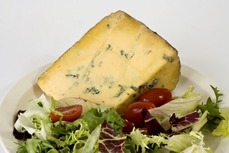 Queijo azul e salada fotografia de stock